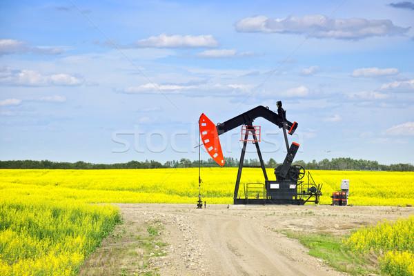Stock photo: Nodding oil pump in prairies