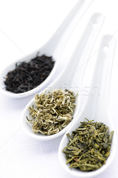 Assortment of dry tea leaves in spoons Stock photo © elenaphoto
