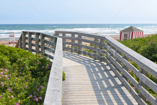 Wooden walkway to ocean beach Stock photo © elenaphoto