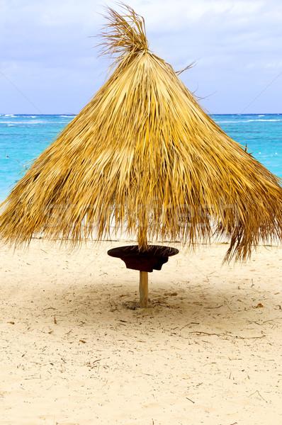 Spiaggia tropicale ombrello erba sabbia Caraibi mare Foto d'archivio © elenaphoto