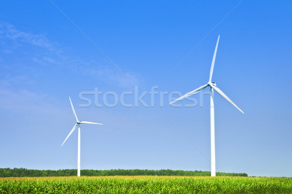 Wind turbines in field Stock photo © elenaphoto