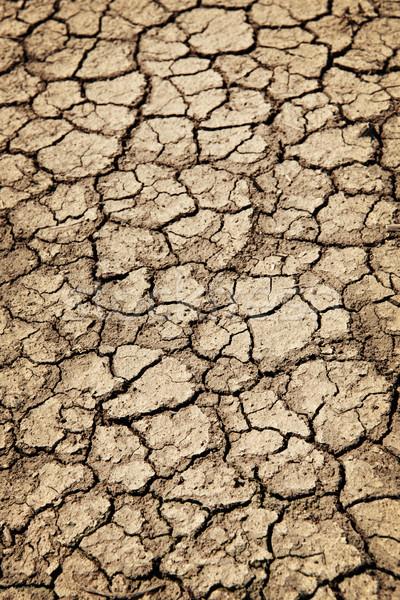 Drogen gebarsten grond droogte bodem vuil Stockfoto © elenaphoto