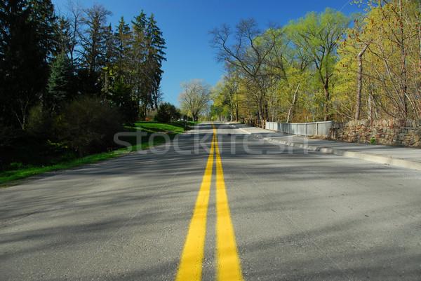 Empty road Stock photo © elenaphoto