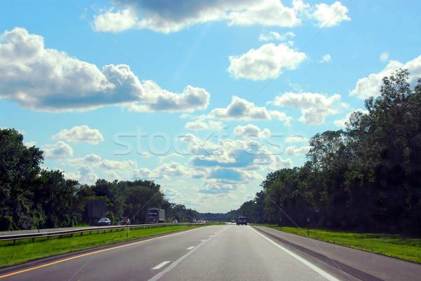 Highway Stock photo © elenaphoto