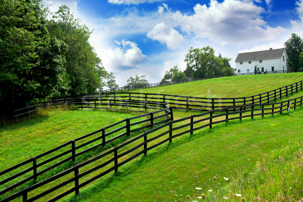 Rural landscape farmhouse Stock photo © elenaphoto