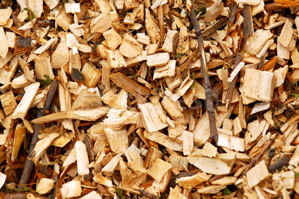 Wood chips Stock photo © elenaphoto