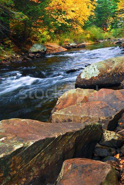 Zdjęcia stock: Spadek · rzeki · krajobraz · kolorowy · jesienią · drzew