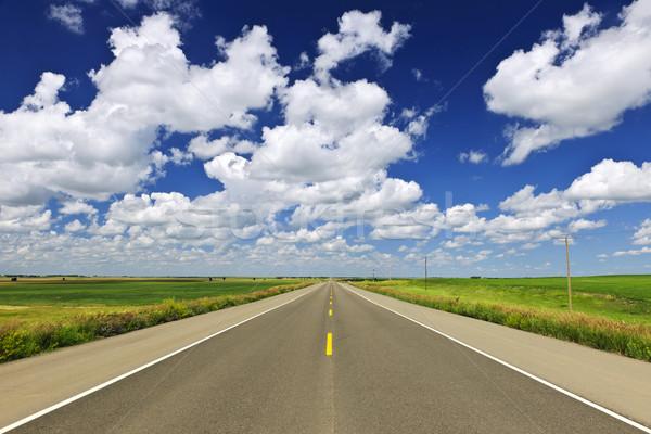 Prairie highway Stock photo © elenaphoto