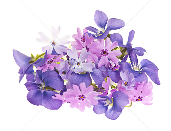 Bouquet of spring flowers Stock photo © elenaphoto