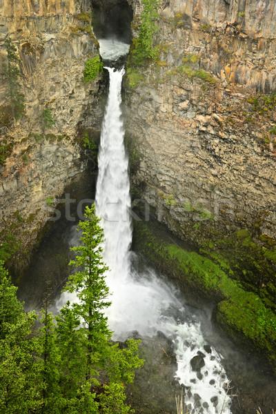 Spahats Falls waterfall in Wells Gray Provincial Park, Canada Stock photo © elenaphoto