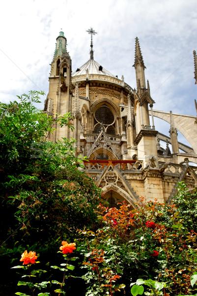 Сток-фото: Париж · мнение · роз · цветы