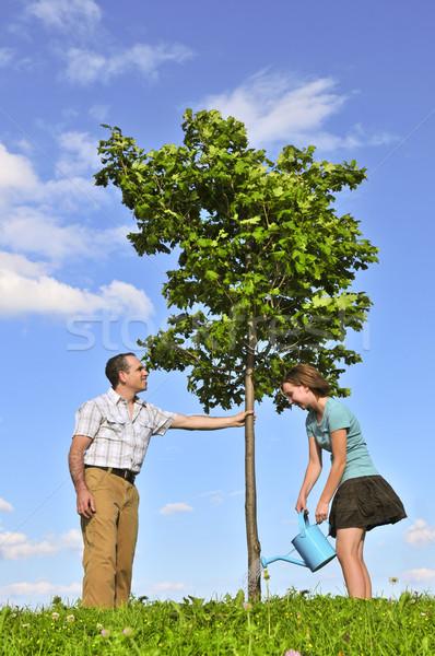 Planting a tree Stock photo © elenaphoto