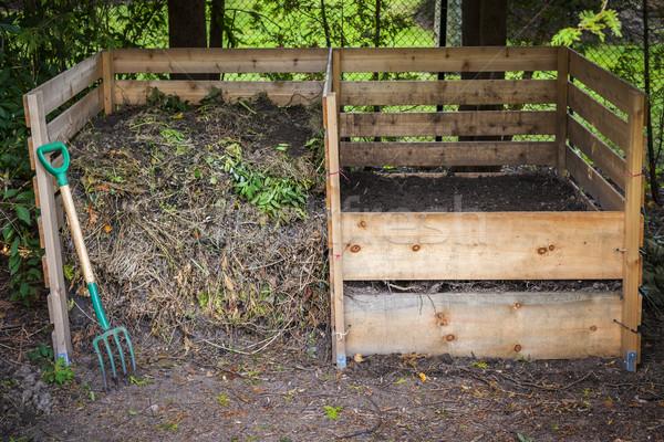 Udvar nagy cédrus fa dobozok föld Stock fotó © elenaphoto