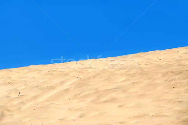 Duna cielo azul paisaje océano azul arena Foto stock © elenaphoto