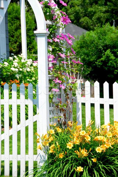 Kert fehér kerítés rózsaszín vidék ház Stock fotó © elenaphoto