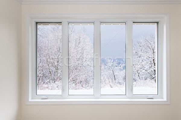 Window with view of winter trees Stock photo © elenaphoto