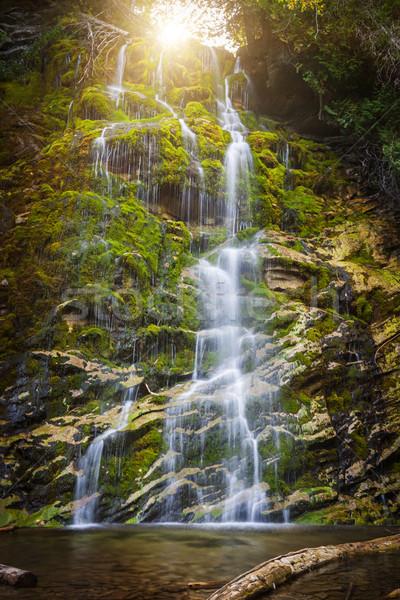 La wodospad zielone mech pokryty skał Zdjęcia stock © elenaphoto