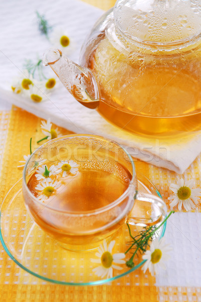 Chamomile tea Stock photo © elenaphoto