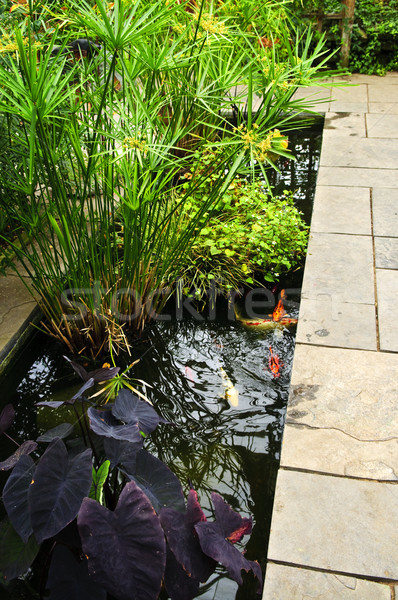Lush green garden Stock photo © elenaphoto