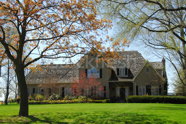Mansion in spring Stock photo © elenaphoto