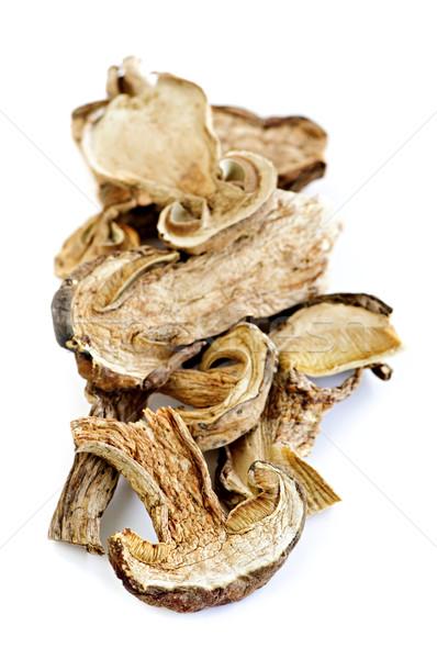 Dry porcini mushrooms Stock photo © elenaphoto