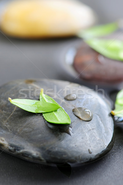 Stones in water Stock photo © elenaphoto