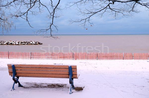 Сток-фото: зима · скамейке · парка · покрытый · снега · пляж