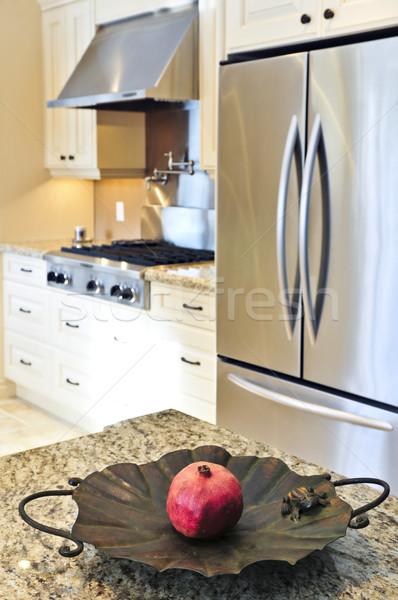 Interior da cozinha interior moderno luxo cozinha aço inoxidável Foto stock © elenaphoto