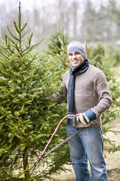 Man cutting Christmas tree Stock photo © elenaphoto