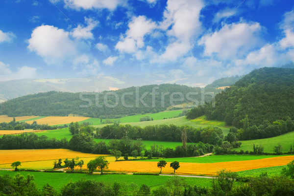 Rural landscape Stock photo © elenaphoto