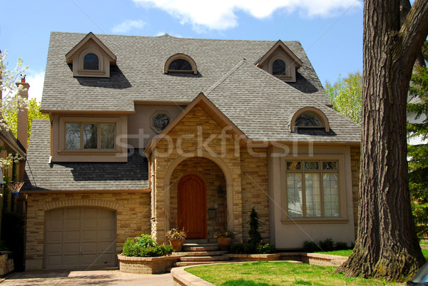 New custom home Stock photo © elenaphoto