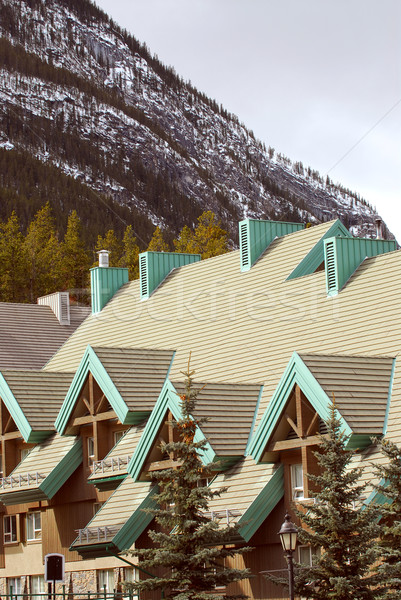 Mountain lodge Stock photo © elenaphoto