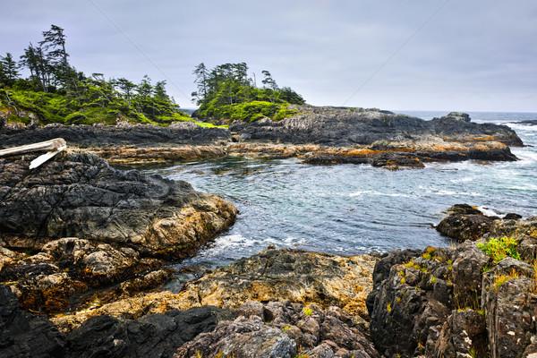 Costa oceano Vancouver ilha Canadá costa Foto stock © elenaphoto