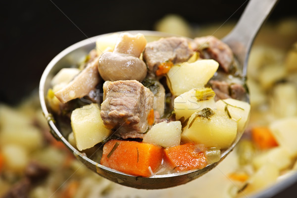 Beef stew in serving spoon Stock photo © elenaphoto
