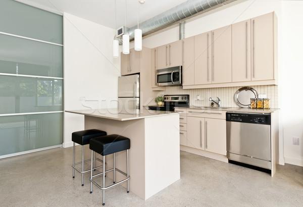 Modern condo kitchen Stock photo © elenaphoto