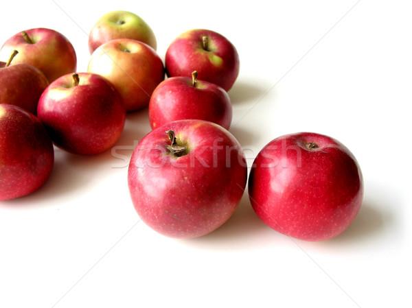 Maçãs mac branco natureza maçã Foto stock © elenaphoto