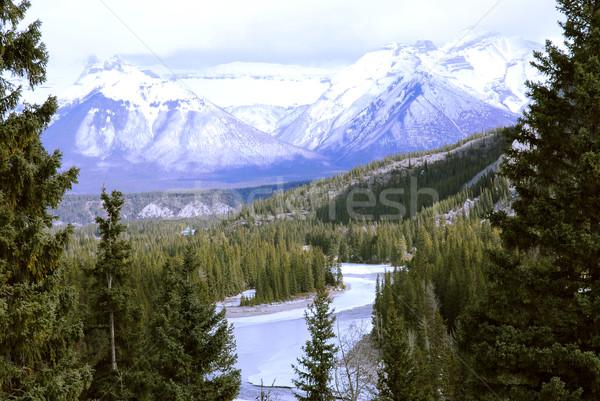 Montagne paysage élevé montagnes arbres congelés Photo stock © elenaphoto