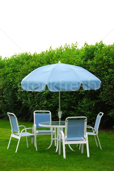 Kerti bútor gyep otthon kert nyár kék Stock fotó © elenaphoto