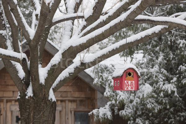 Red barn birdhouse on tree in winter Stock photo © elenaphoto