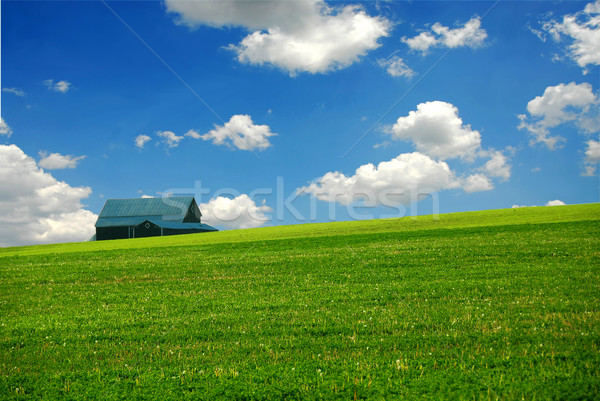 Barn in farm field Stock photo © elenaphoto