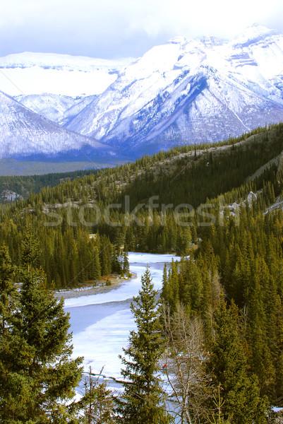 山 風景 高い 山 木 凍結 ストックフォト © elenaphoto