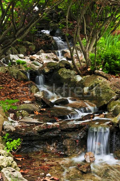 Patak vízesések kicsi japán zen kert Stock fotó © elenaphoto