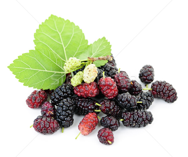 Fresh mulberries with leaves Stock photo © elenaphoto