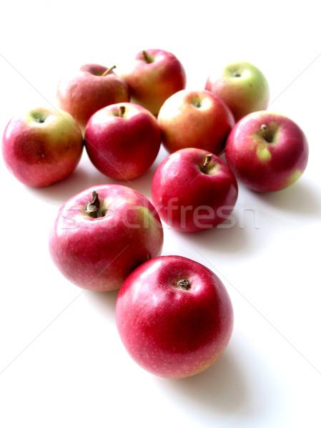 Maçãs mac branco natureza maçã fruto Foto stock © elenaphoto