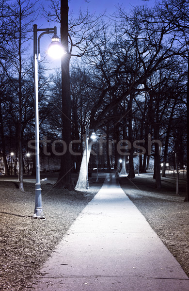 Park path at night Stock photo © elenaphoto