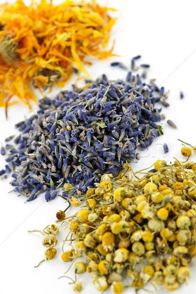 Dried medicinal herbs Stock photo © elenaphoto