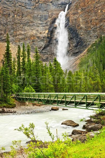 Takakkaw Falls waterfall in Yoho National Park, Canada Stock photo © elenaphoto