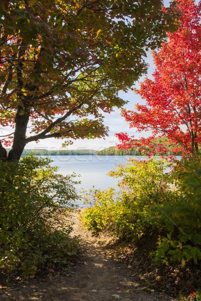 Path to the lake Stock photo © elenaphoto