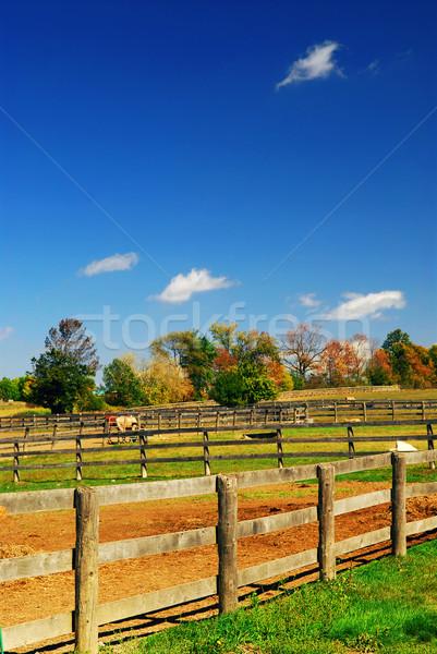 Stockfoto: Landelijk · boerderij · landschap · vroeg · vallen