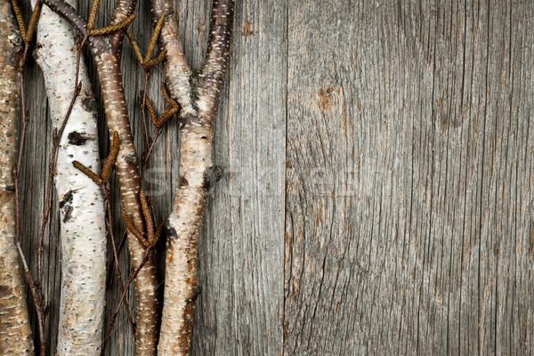Birch branches background Stock photo © elenaphoto